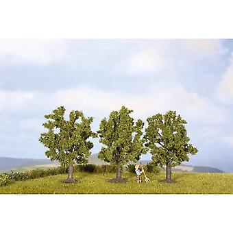 NOCH 25510 Tree set Fruit tree 45 up to 45 mm Green 3 pc(s)