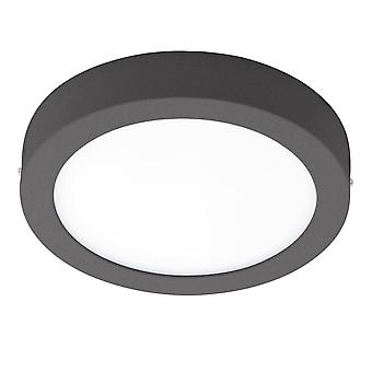 Eglo Argolis LED IP44 Outdoor Wall Or Ceiling Light In Anthracite
