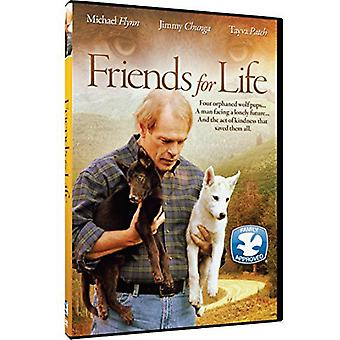 Venner for livet [DVD] USA importerer