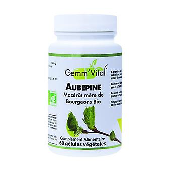 Hawthorn bud - gemmotherapy 60 vegetable capsules