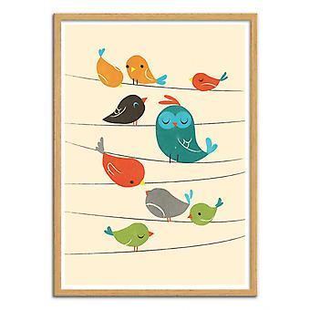 Art-Poster - Kleurrijke vogels - Jay Fleck