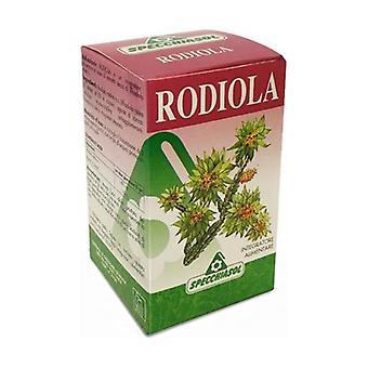 Rhodes 60 capsules