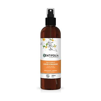 Orange blossom floral water 200 ml of floral water