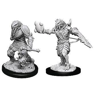 Dungeons & Dragons Nolzur's Marvelous Omålade Miniatyrer (W11) Man Dragonborn Paladin