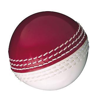 Gunn & Moore Ferdigheter Ball trening og utvikling Holdbar Cricket Ball