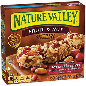 Nature Valley frugt & møtrik Trail Mix barer tranebær & granatæble