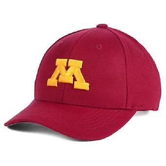 Minnesota tuzas NCAA juventud remolque