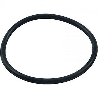Pentair 273062 O-Ring for Pool or Spa Pump and Valve