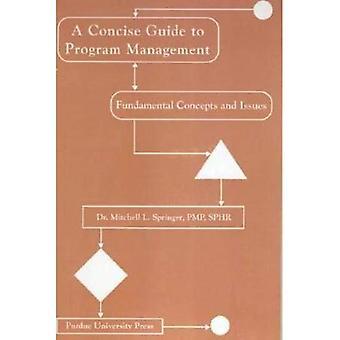 Beknopte gids voor programmabeheer: fundamentele begrippen en kwesties