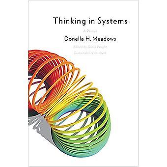 Denken in systemen: een Primer