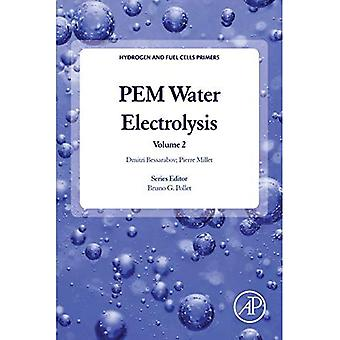 PEM Water Electrolysis: Volume 2 (Hydrogen and Fuel Cells Primers)