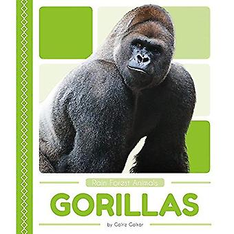 Gorillas: Includes Qr Codes� (Rain Forest Animals)