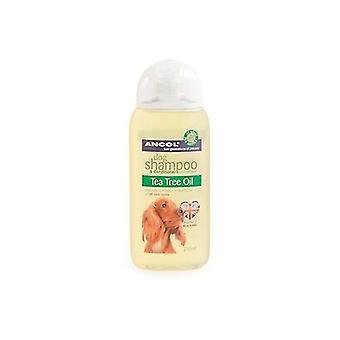 Revitalisant et Ancol 200 ml Tea Tree Oil chien shampooing