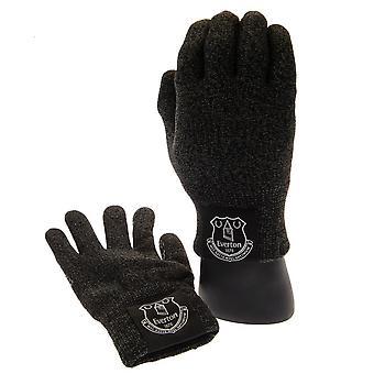 Everton FC Unisex Kids lyx touchscreen handskar
