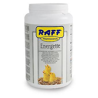 Raff Energette    (Birds , Hand Rearing)