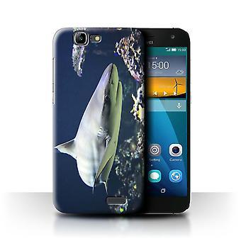 STUFF4 Case/Cover for Huawei Ascend G7/Blacktip Shark/Marine Wildlife