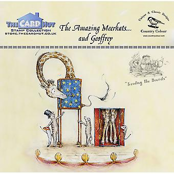 The Card Hut The Amazing Meerkats Clear Stamps