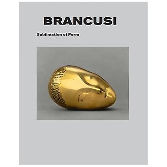 Brancusi by Snoek Publishers with Exhibitions International