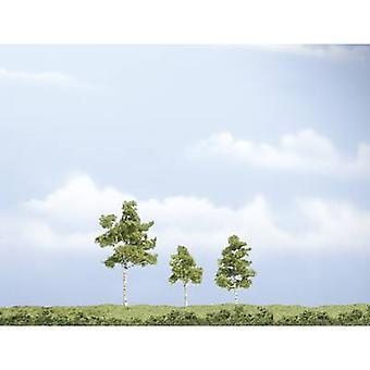 Woodland Scenics WTR1605 Baum Set Buche 40 bis 75 mm Mittelgrün 3 Stk.
