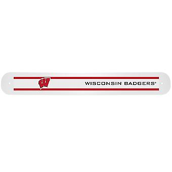 Wisconsin Badgers NCAA Travel Toothbrush Case