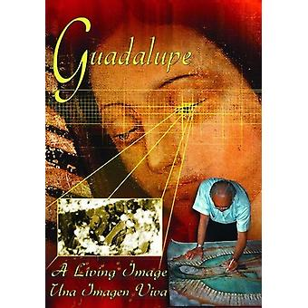 Guadalupe - Guadalupe: A Living Image [DVD] USA import