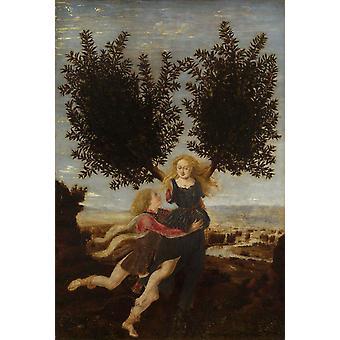 Apollo and Daphne,Antonio del Pollaiuolo,28x19cm