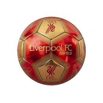 Liverpool Skill Ball Signature