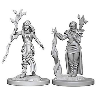 D&D Nolzur's Marvelous Unpainted Miniatures Human Female Druid (Pack of 6)