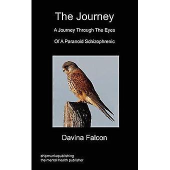 The Journey by Falcon & Davina