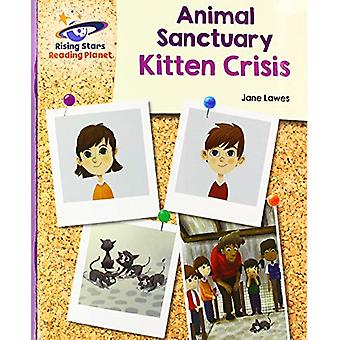 Reading Planet - Animal Sanctuary Kitten Crisis - Purple - Galaxy by J