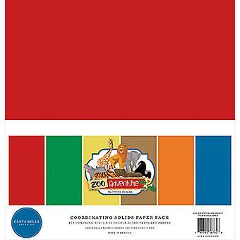 Carta Bella Zoo Adventure 12x12 Inch Coördineren Solids Solids Paper Pack
