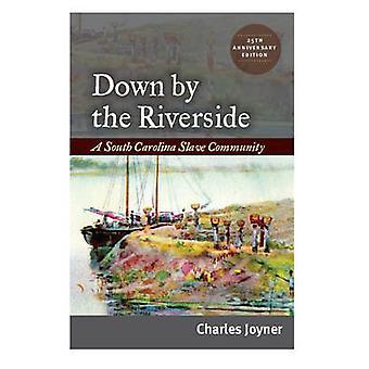 Down by the Riverside - A South Carolina Slave Community by Charles Jo