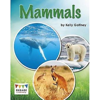 Säugetiere (Alphabetisierung zu engagieren: Alphabetisierung White engagieren)