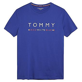 Tommy Hilfiger Pure Cotton Logo Crew Neck T-Shirt, Sodalite Blue, X-Large