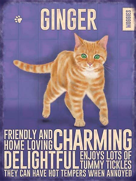 Medium Wall Plaque 200mm x 150mm - Ginger Cat