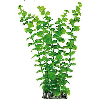 Vedessä kasvien Planta de Plástico Bacopa Aurea 2