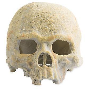 Exo Terra Fluorescent Skull (Reptiles , Decoration , Caves & Rocks)