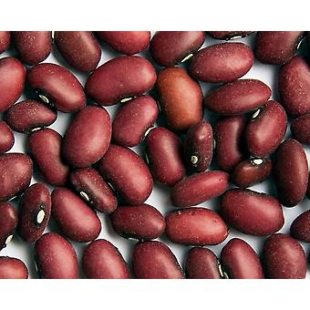 Small Red Mexican Beans -( 22lb )