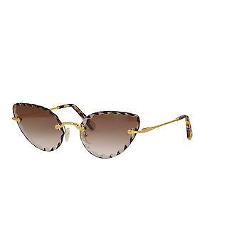 Chloe CE157S 742 Gold/Braun Gradient Sonnenbrille