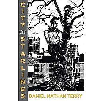 City of Starlings by Terry & Daniel Nathan