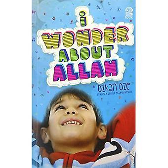 I Wonder About Allah: Bk. 2 (I Wonder About Islam)