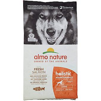 Almo Nature Holistic Maintenance Medium Adult Dog Dry Food Maintenance Large Salmon - 12kg