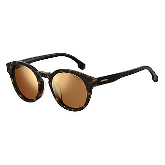 Carrera 184/F/S 086/K1 Dark Havana/Gold Mirror Solglasögon