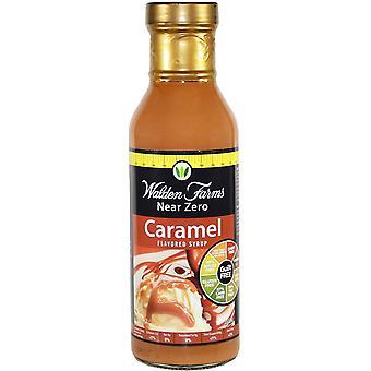 Syrup, Caramel - 355 ml.