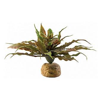 Exo-Terra Desert Star Cactus Terrarium Plant - Confezione da 1