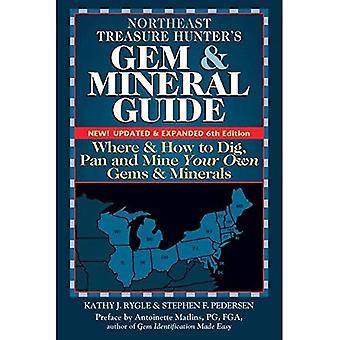 Koillis aarteen metsästäjät helmi & mineraali oppaita USA: 4