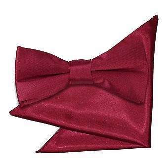 Burgund-Plain Satin Krawatte und Einstecktuch für jungen eingestellt