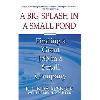 Big Splash in Small Pond by Resnick & R. Linda