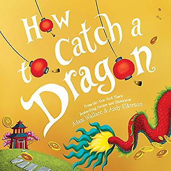 How to Catch a Dragon by Adam Wallace - 9781492693697 Book