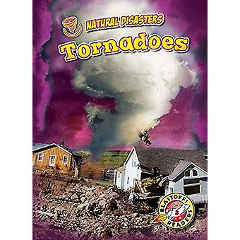 Tornadoes by Betsy Rathburn - 9781644870273 Book